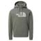 The North Face Drew Peak Light PO Hoodie - Agave Green